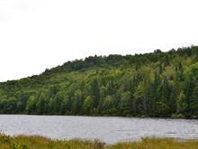 Terrain à vendre à Sainte-Marguerite-du-Lac-Masson, Laurentides, Rue du Lac-des-Sommets, 12538790 - Centris