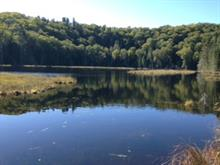 Land for sale in Lac-Saguay, Laurentides, 290, Chemin du Lac-Nominingue, 23611306 - Centris