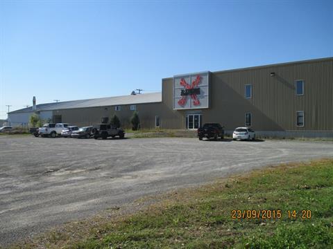 Bâtisse industrielle à vendre à Saint-Pie, Montérégie, 112, Rang des Grandes-Allonges, 17849747 - Centris