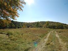 Terrain à vendre à Saint-Faustin/Lac-Carré, Laurentides, Chemin  Wilfrid, 27247794 - Centris