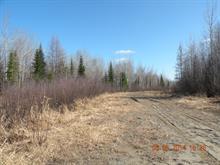 Land for sale in Rivière-Héva, Abitibi-Témiscamingue, 480, Route  Saint-Paul Nord, 15029952 - Centris