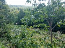 Terrain à vendre à Bolton-Est, Estrie, Montée de Baker-Pond, 11554165 - Centris