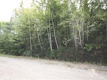 Terrain à vendre à Chertsey, Lanaudière, Avenue  René, 18880402 - Centris
