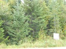 Terrain à vendre à Saint-Donat, Lanaudière, Chemin de la Colline, 20350013 - Centris