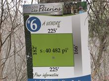 Terrain à vendre à Notre-Dame-du-Portage, Bas-Saint-Laurent, Rue de l'Île-aux-Lièvres, 24532294 - Centris