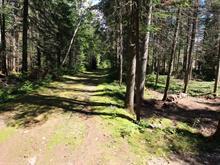 Terrain à vendre à Saint-Donat, Lanaudière, Chemin du Geai-Bleu, 17040834 - Centris