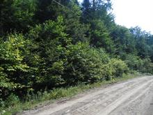Lot for sale in Gore, Laurentides, Rue du Sahara, 17735052 - Centris