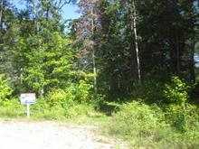 Lot for sale in Sainte-Anne-du-Lac, Laurentides, Rue  Bigras, 11136751 - Centris