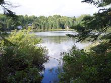 Terrain à vendre à Saint-Adolphe-d'Howard, Laurentides, Chemin des Tilleuls, 12466117 - Centris