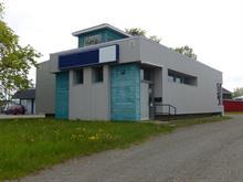 Maison à vendre à Saint-Pascal, Bas-Saint-Laurent, 751, Rue  Desjardins, 23580720 - Centris