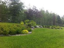 Terrain à vendre à Thetford Mines, Chaudière-Appalaches, 303, Rue  Caouette Ouest, 23623711 - Centris