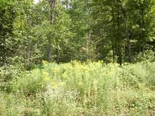 Lot for sale in Val-David, Laurentides, Chemin  Paquette, 22733648 - Centris