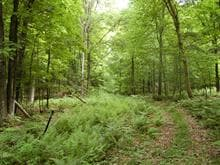 Lot for sale in Val-David, Laurentides, Chemin  Paquette, 21218799 - Centris
