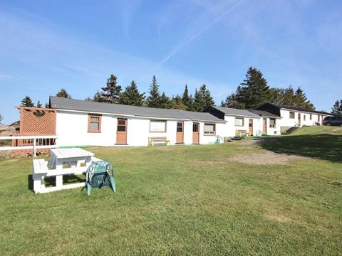 Commercial building for sale in Notre-Dame-des-Neiges, Bas-Saint-Laurent, 41, Chemin de la Grève-de-la-Pointe, 28628370 - Centris