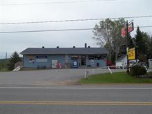Business for sale in Saint-Damien, Lanaudière, 4270, Chemin des Brises, 23023761 - Centris