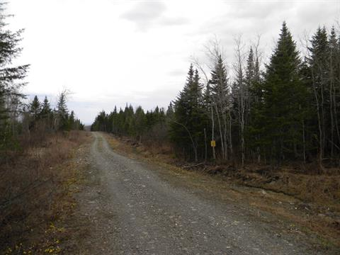 Land for sale in Saint-Malo, Estrie, Chemin du 5e-Rang, 10135172 - Centris