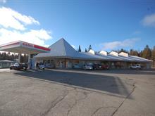 Commercial building for sale in Sainte-Adèle, Laurentides, 3600, boulevard de Sainte-Adèle, 22165637 - Centris