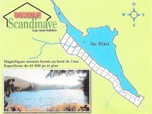Terrain à vendre à Lac-aux-Sables, Mauricie, 8, Chemin de l'Épinette, 13904464 - Centris