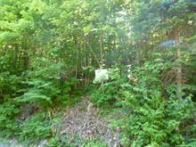 Terrain à vendre à Saint-Adolphe-d'Howard, Laurentides, Montée du Lac-Louise, 25344541 - Centris