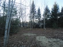 Lot for sale in Saint-Lin/Laurentides, Lanaudière, Rang  Sainte-Henriette, 18835682 - Centris