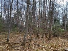 Lot for sale in Sainte-Béatrix, Lanaudière, Rue du Sommet, 19472664 - Centris
