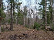 Lot for sale in Sainte-Béatrix, Lanaudière, Rue du Sommet, 21851579 - Centris