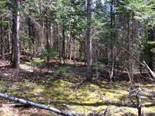 Lot for sale in Sainte-Béatrix, Lanaudière, Rue du Sommet, 25975554 - Centris