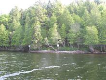 Terrain à vendre à Lac-Tremblant-Nord, Laurentides, Rive du Lac-Tremblant, 9120691 - Centris