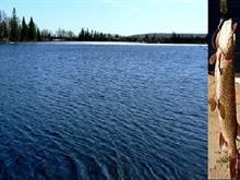 Terre à vendre à Lac-Saint-Paul, Laurentides, Montée des Bleuets, 27739245 - Centris