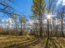 Terre à vendre à Lac-Brome, Montérégie, Chemin du Centre, 21276419 - Centris