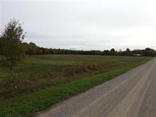 Terre à vendre à Clarendon, Outaouais, 576C, 13e Concession, 19248104 - Centris