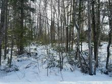 Lot for sale in Chénéville, Outaouais, Montée  Dinel, 12923420 - Centris