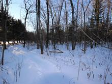 Lot for sale in Rock Forest/Saint-Élie/Deauville (Sherbrooke), Estrie, Chemin  Rhéaume, 9048496 - Centris