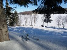 Lot for sale in Grand-Remous, Outaouais, 236, Chemin de la Baie-au-Sable, 17627319 - Centris