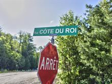 Terrain à vendre à Saint-Côme, Lanaudière, Côte du Roi, 17986482 - Centris