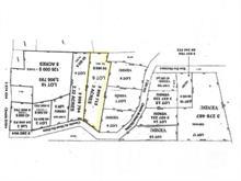 Terrain à vendre à Mont-Tremblant, Laurentides, Chemin du Mont-du-Daim, 27670201 - Centris