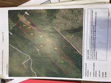 Terre à vendre à Saint-Camille-de-Lellis, Chaudière-Appalaches, 18, Rang  A-et-B, 9453578 - Centris