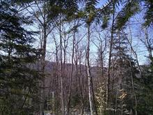 Lot for sale in Sainte-Adèle, Laurentides, Chemin du Paysan, 27916961 - Centris