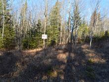Lot for sale in Wentworth-Nord, Laurentides, Route  Principale, 13735912 - Centris