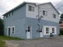 Triplex à vendre à Maniwaki, Outaouais, 295 - 297, Rue  Fafard, 20365885 - Centris