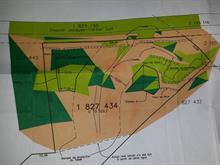 Terrain à vendre à Stoneham-et-Tewkesbury, Capitale-Nationale, 509, Chemin  Jacques-Cartier Sud, 24705551 - Centris