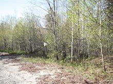 Terrain à vendre à Chertsey, Lanaudière, Rue  Salvador-Dali, 28066631 - Centris