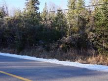 Lot for sale in Saint-Faustin/Lac-Carré, Laurentides, Chemin du Lac-Rougeaud, 28143888 - Centris