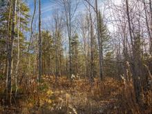 Lot for sale in Stanstead - Canton, Estrie, Chemin  Astbury, 23827844 - Centris