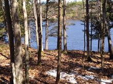 Terre à vendre à L'Isle-aux-Allumettes, Outaouais, Chemin des Rapides, 12054396 - Centris