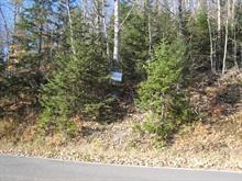 Lot for sale in Estérel, Laurentides, Chemin d'Estérel, 14270744 - Centris