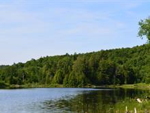 Lot for sale in Brownsburg-Chatham, Laurentides, Chemin de Via-Veneto, 26979061 - Centris