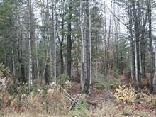 Lot for sale in Rawdon, Lanaudière, Rue  Morel, 11165505 - Centris