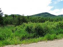Terrain à vendre à L'Anse-Saint-Jean, Saguenay/Lac-Saint-Jean, 6, Rue du Rivage, 20144168 - Centris