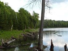 Terrain à vendre à Ferme-Neuve, Laurentides, Chemin du Lac-Major, 27261293 - Centris